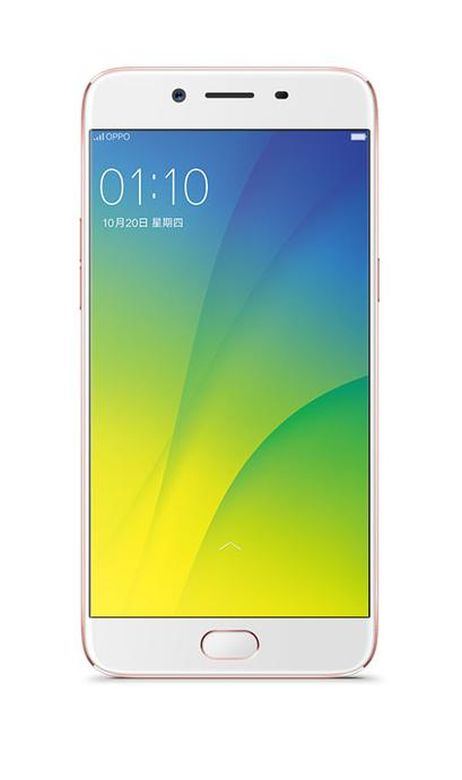Lcd Screen For Oppo R9s Plus Replacement Display By - Maxbhi.com