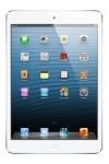 Apple iPad mini Wi-Fi Spare Parts & Accessories