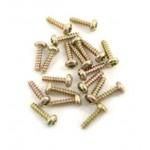 Screw For Motorola V60 - Gold