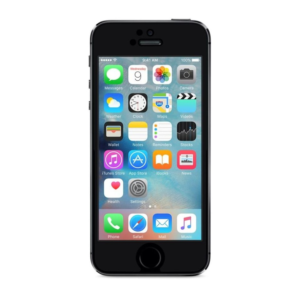 LCD Screen for Apple iPhone 5s (replacement display without touch)